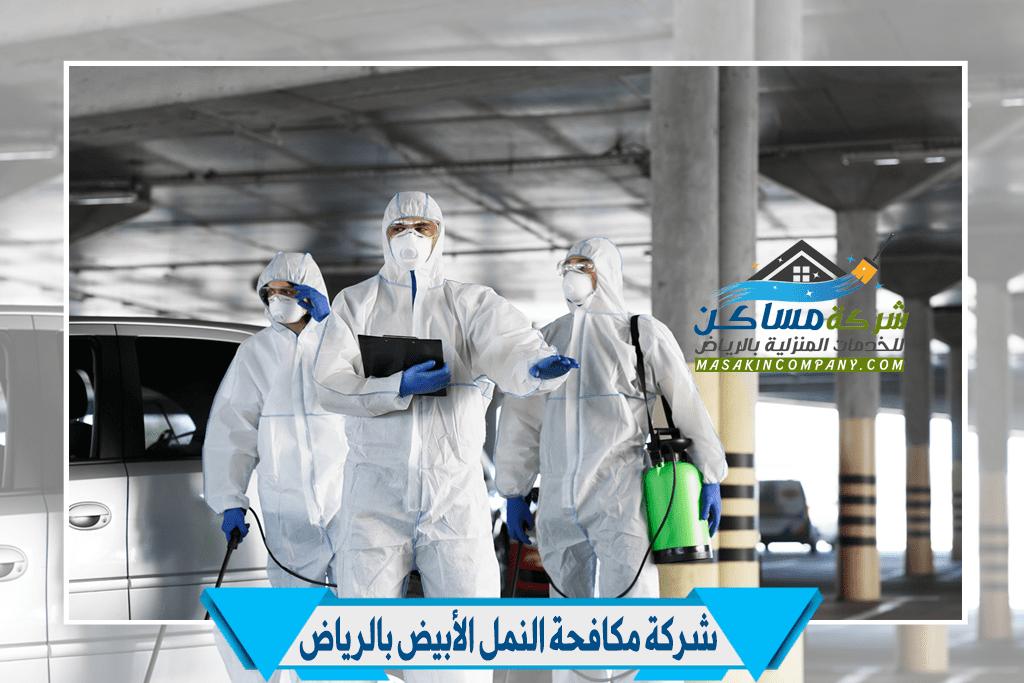 مكافحة النمل في الرياض